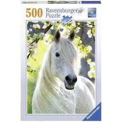 Puzzle Gyönyörű ló 500 darabos 14726
