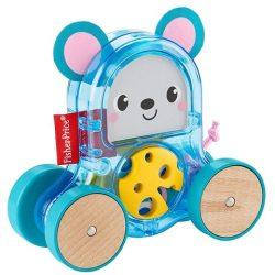 Mattel: Fisher Price Változatos anyagok guruló állat GLD02
