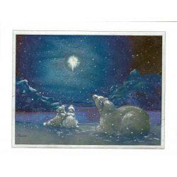 Üdvözlőkártya-Jegesmacik holdfénynél Lézeres