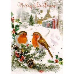 Üdvözlőkártya-Madárkák a havasi tájban -Karácsonyi/Simon Elvin Xmas Cards