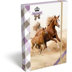 Füzetbox A/4 GEO Horse Two Lizzy Card