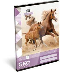 Füzet tűzött A/5 2.o. GEO Horse Two Lizzy Card