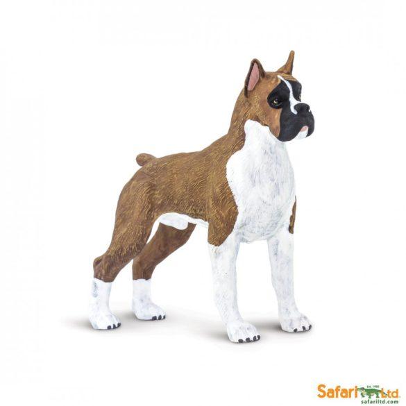 Bokszer kutya Safari