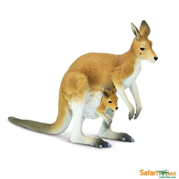 Kangaroo with Joey-Kenguru kicsinyével-Safari