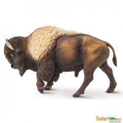 Bölény- Bison Safari