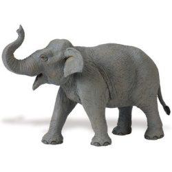 Ázsiai elefánt- Asian Elephant Safari
