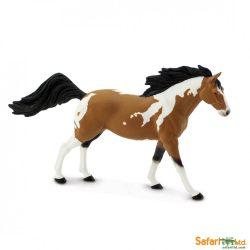 Pinto Mustang ló- Pinto Mustang Stallion Safari