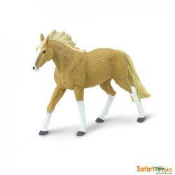 Bashkir-Curly póni ló- Safari