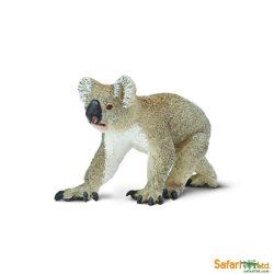 Koala Safari