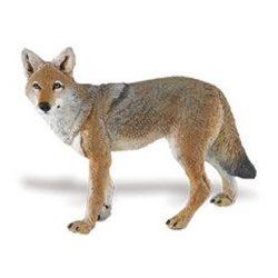 Prérifarkas- Coyote Safari