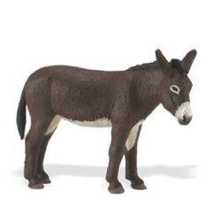 Szamár- Donkey Safari