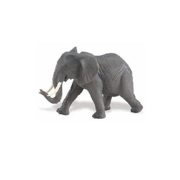 Afrikai elefánt Safari