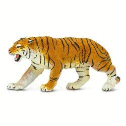 Bengáli tigris Safari