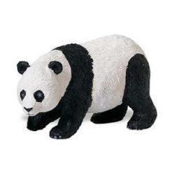 Panda maci-Safari