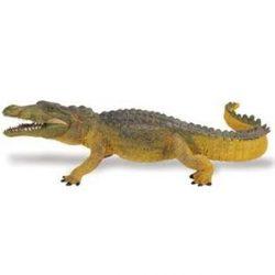 Krokodil- Crocodile Safari