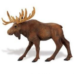 Jávorszarvas- Moose Safari