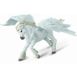 Pegasus - Pegazus Safari