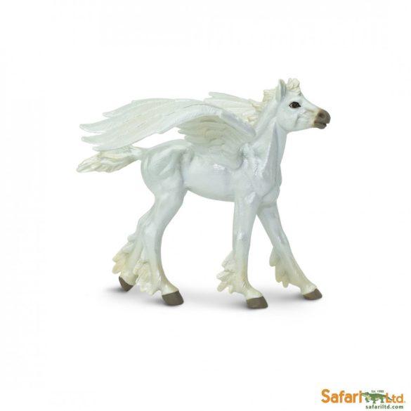 Baby Pegasus Safari